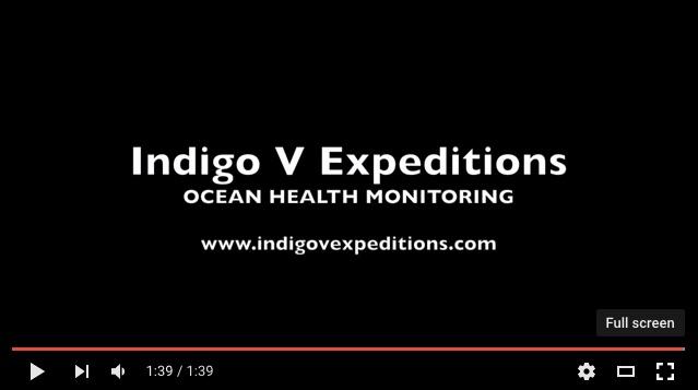 IndigoV YouTube